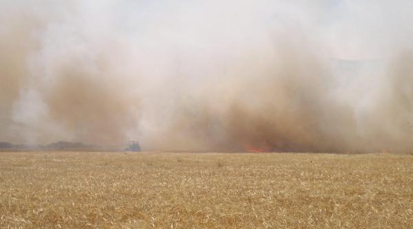 Kırıkhan'da 20 Dönüm Buğday Yandı