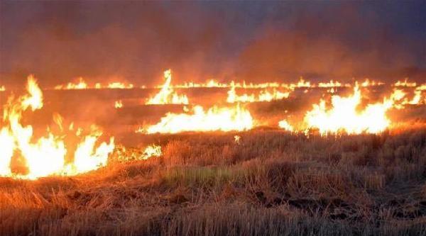 Kırıkkale'de Çiftçilere Anız Yangını Uyarısı