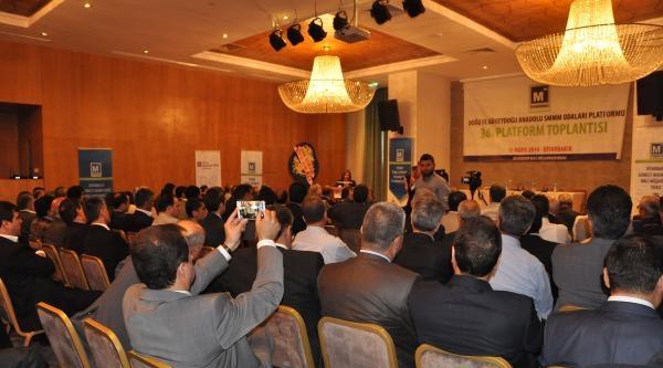 Kışanak: Umuyoruz Ki Türkiye'nin Ab Süreci Hızla İlerler