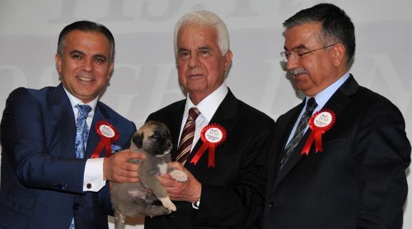 Kktc Cumhurbaşkanı Eroğlu Şehit Ailelerini Ve Gazileri Ziyaret Etti (2)
