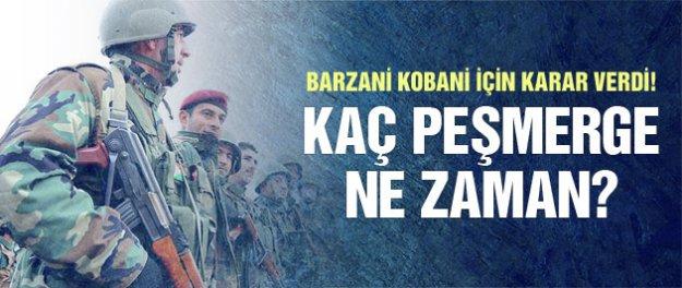 Kobani'ye kaç Peşmerge ne zaman gidecek?