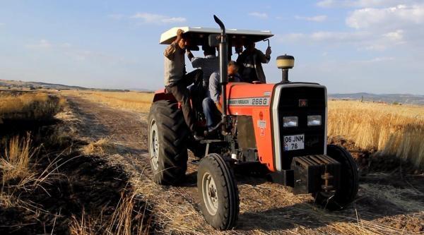 Kopan Elektrik Teli, 25 Dönüm Buğday Tarlasını Yaktı