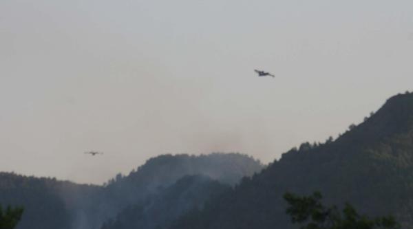 Köyceğiz'de Orman Yangını (2)