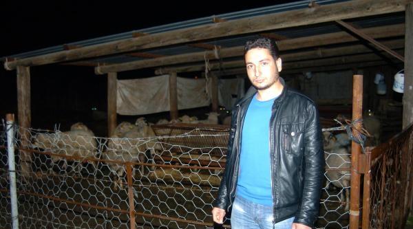 Köyde Kuduz Karantinası