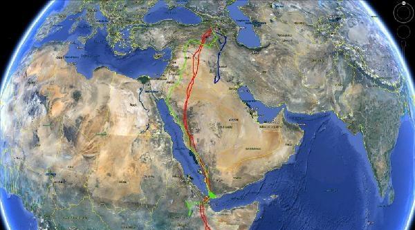 Küçük Akbaba 50 Bin Kilometre Uçup, 18 Ülke Geçti