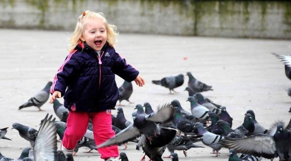 Küçük Kızın Güvercin Sevgisi