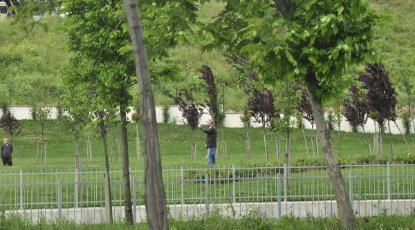 Küçükçekmece'de Pompalı Dehşeti: Genç Kadını Vurdu Yanında Oturup Telefonla Konuştu (1)
