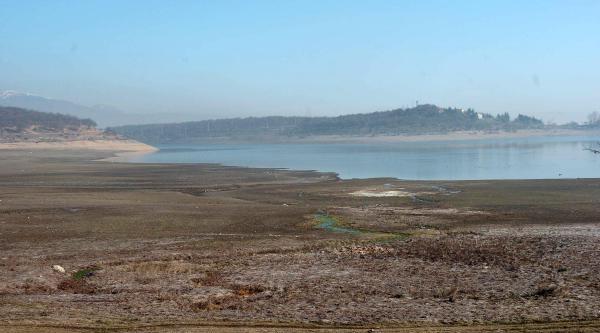 Kurak Kiş Gölette Su Seviyesini Düşürdü