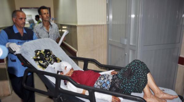 Kurtların Saldırdığı 2 Kişi Ağır Yaralandı