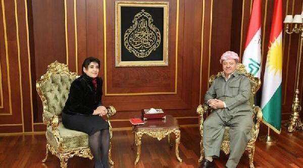 Leyla Zana, Barzani Ile Görüştü