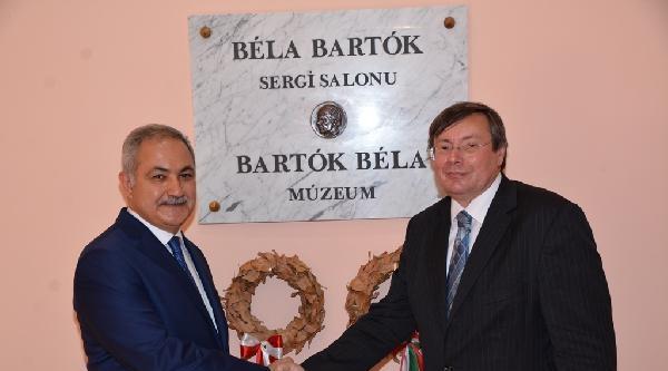 Macar Sanatçı Bela Bartok, Osmaniye'de Anılacak