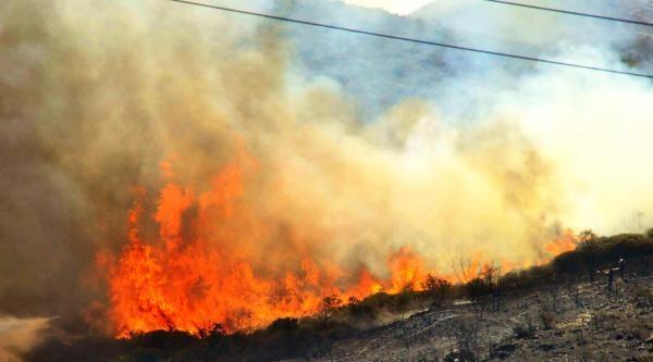 Makilik Yangını Bodrum'da Korkuya Neden Oldu