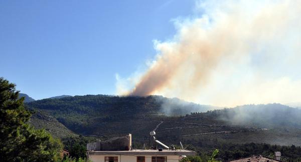 Manavgat'ta Orman Yangını / Fotoğraflar