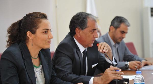 Mardin'de 3 Dilli Anons Dönemi