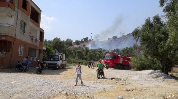Milas'ta Aynı Bölgede 2 Günde İkinci Yangın