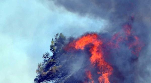 Milas'ta Korkutan Yangın (2)
