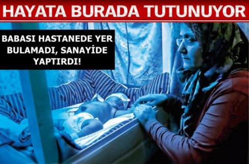 MİNİK POYRAZ'IN MAVİ ODASI!