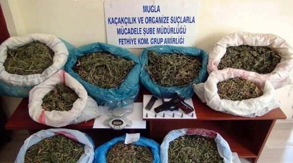 Muğla Polisinden 3 Ilde Uyuşturucu Operasyonu