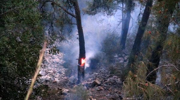 Muğla'da Makilik Ve Ormanlık Alanda Yangın (2)