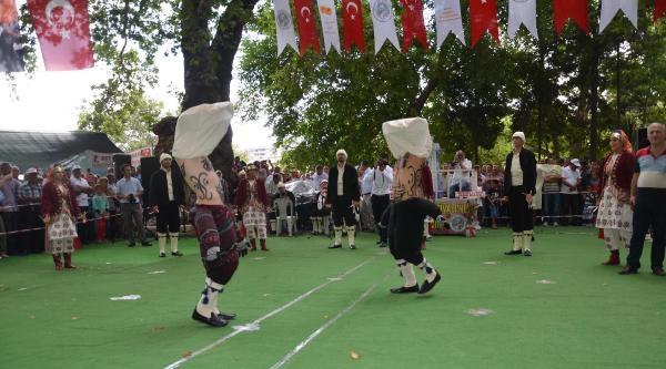 Mut'ta Karacaoğlan Kayısı Festivali Başladı