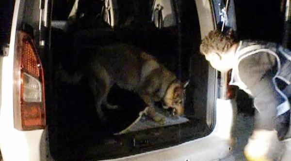 Narkotik Köpeği 'ece' 41 Kilo 722 Gram Eroini Buldu
