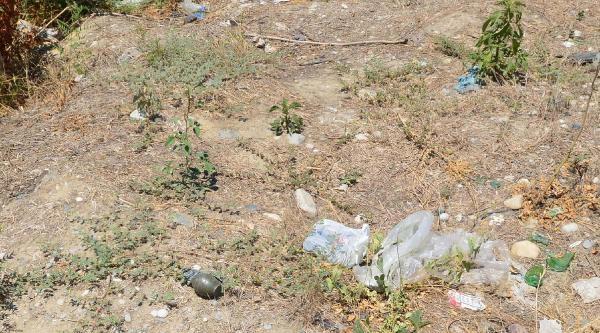 Nazilli'de Karayolu Kenarında 5 El Bombası Bulundu - Ek Fotoğraf