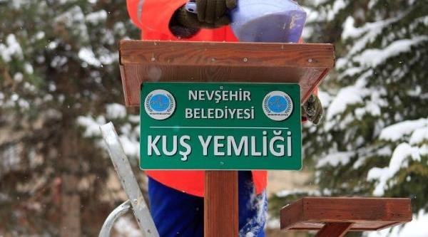Nevşehir Belediyesinden Kuşlara Yem