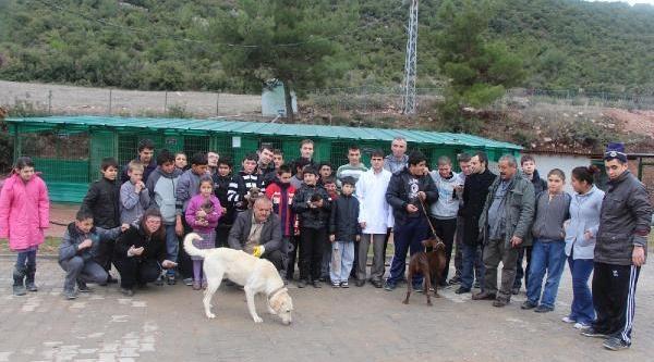 Öğrencilerden Hayvan Barinağina Ziyaret