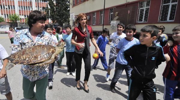 Öğrencilere Caretta Carettaları Anlattı