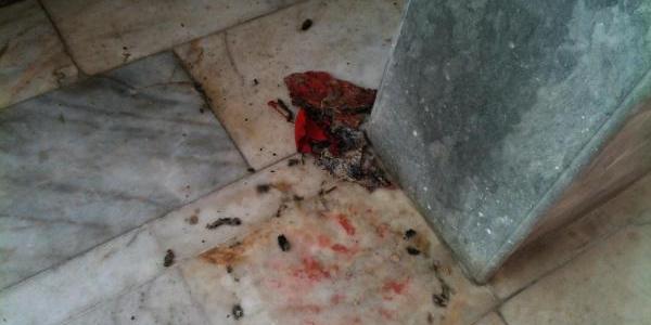 Okul Bahçesindeki Türk Bayrağini Yakan 2 Kişi Yakalandi