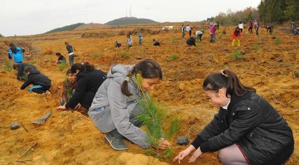 'Okullar Hayat Olsun' Projesi Edirne'De Başladi