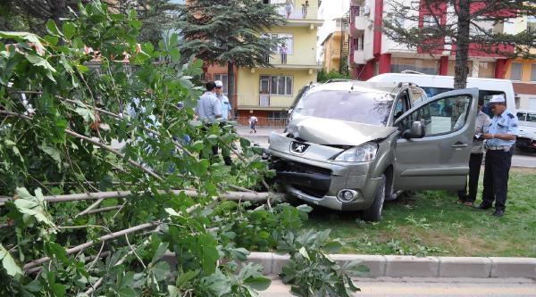 Önce Kamyonete, Sonra Şoförüne Çarpip Ağacı Devirdi: 2 Yaralı