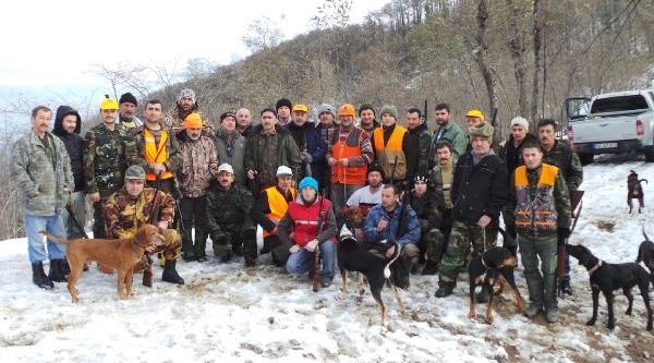 Ordu'da Aç Kalan Yaban Domuzlari Köylere Indi
