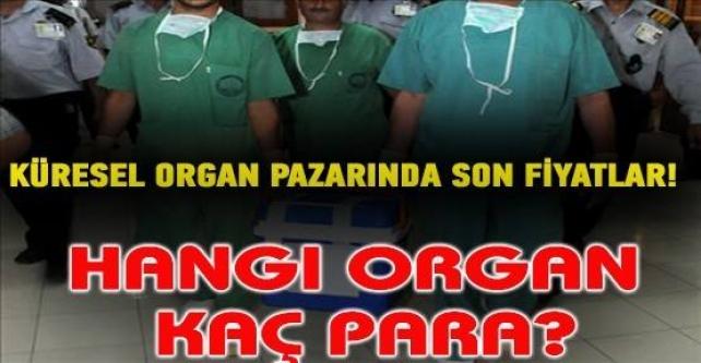 Organ mafyası borsası...Hangi organ kaç para?