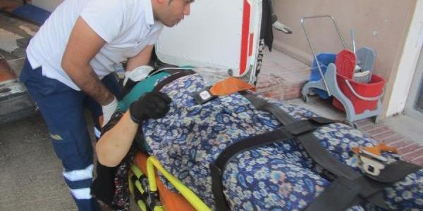 Orhangazi'De Zeytin Ağacindan Düşen 62 Yaşindaki Kadin Öldü