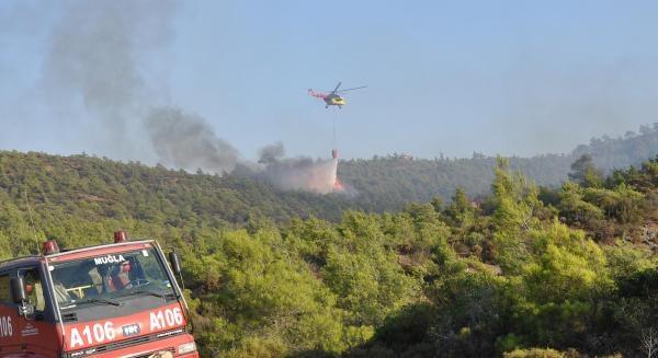 Orman Yangını Tatilcileri Korkuttu
