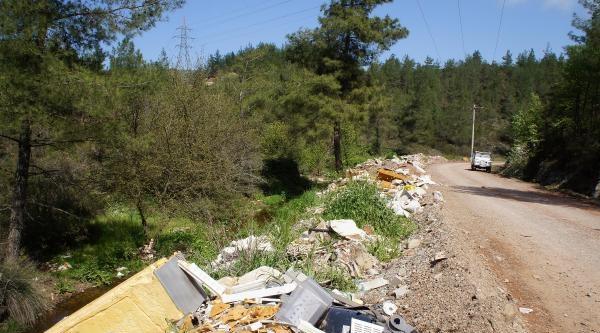 Ormanlık Alana Moloz Döküldü