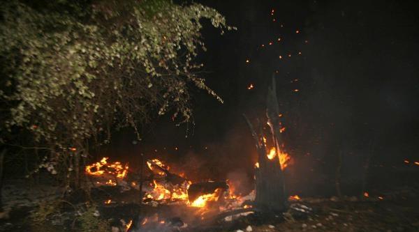 Ortaca'da 5 Hektar Orman Yandı