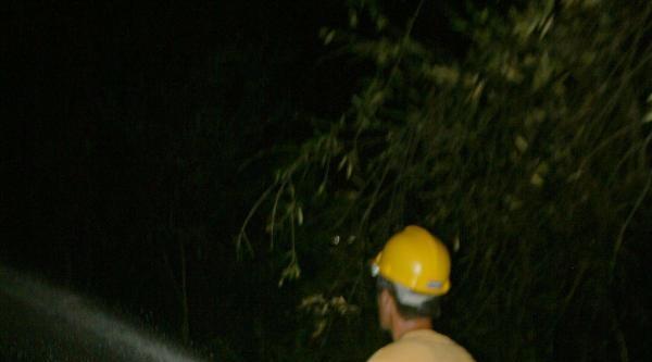 Oteller Bölgesinde Çikan Yangın Korkuttu