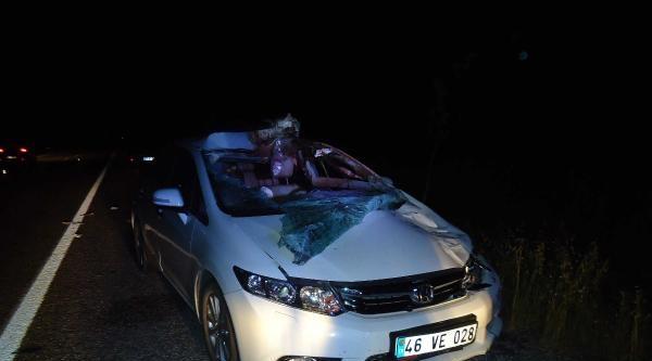 Otomobil Ata Çarpti: 5 Yaralı
