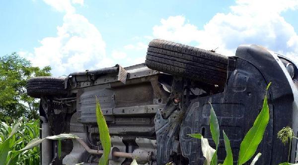 Otomobil Mısır Tarlasına Uçtu: 3 Yaralı