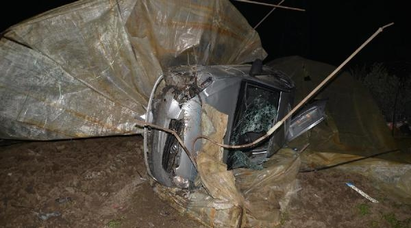 Otomobil Zeytin Fidanı Serasına Uçtu: 1 Yaralı