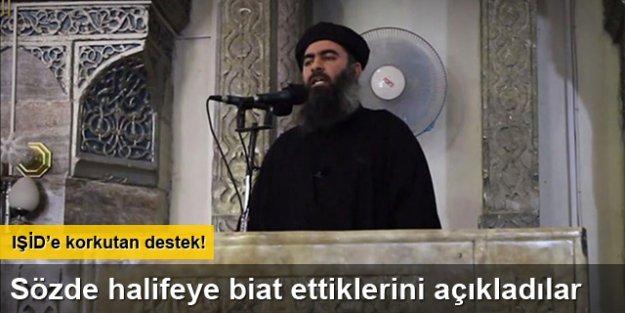 Pakistan Talibanı'ndan IŞİD'e destek
