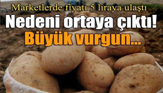 Patates neden 5 lira oldu?