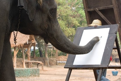 Picasso gibi fil...