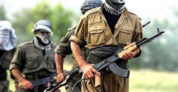 PKK'nın gençlik yapılanmasına 4 ilde operasyon