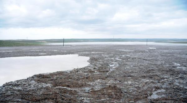 Polatlı'da 8 Bin Dönüm Ekili Alanı Dolu Vurdu