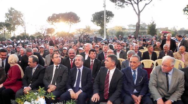 Saanen Keçisi İhracati İzmir'den Başlıyor (3)