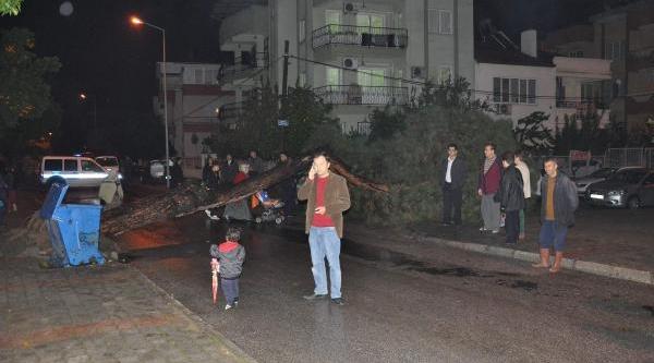 Sağanak Yağmur Nazilli'Yi Vurdu