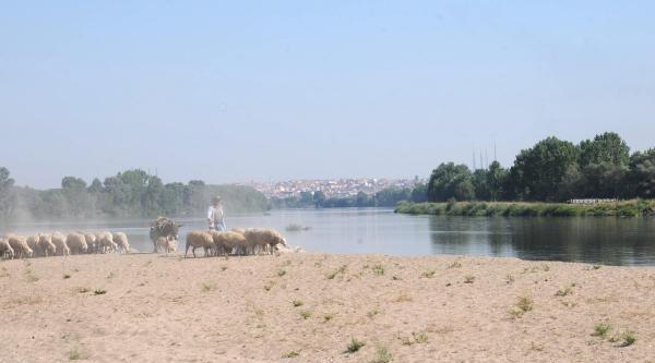 Sahibinden Satılık Nehir Kumu